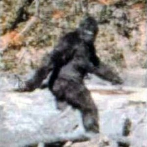 Patterson-Gimlin Bigfoot