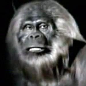 Russian Bigfoot, Nat Geo